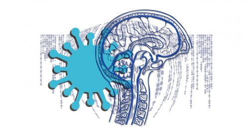 Может ли COVID-19 увеличить риск развития деменции?